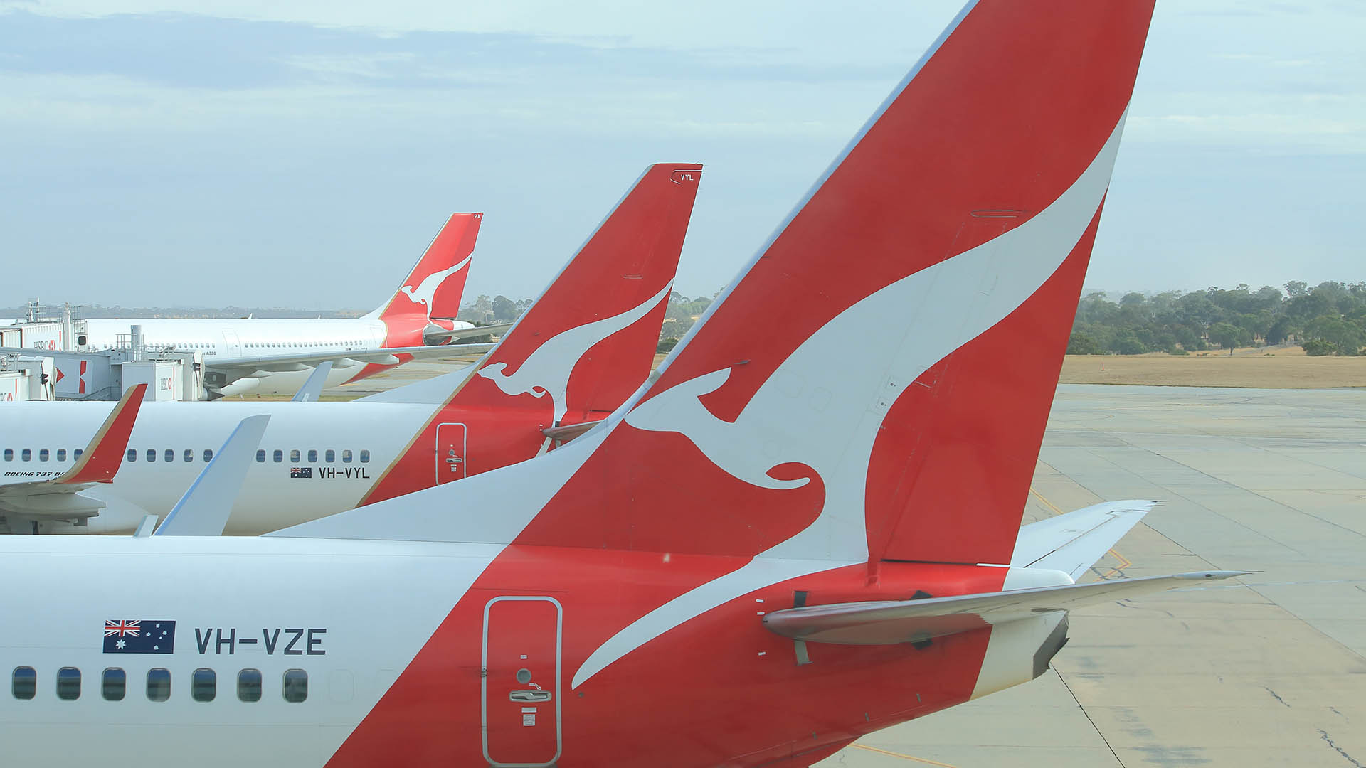 Qantas (ASX:QAN) suspends international flights