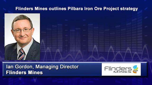 Company Report - Flinders Mines
